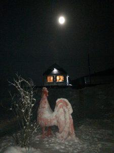 Береть, луна, ночь, домик